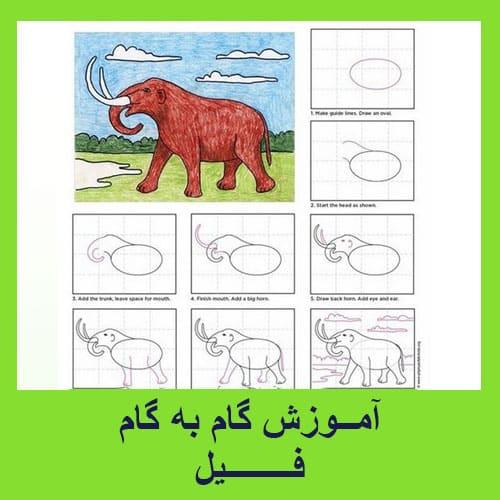 آموزش گام به گام ترسیم فیل