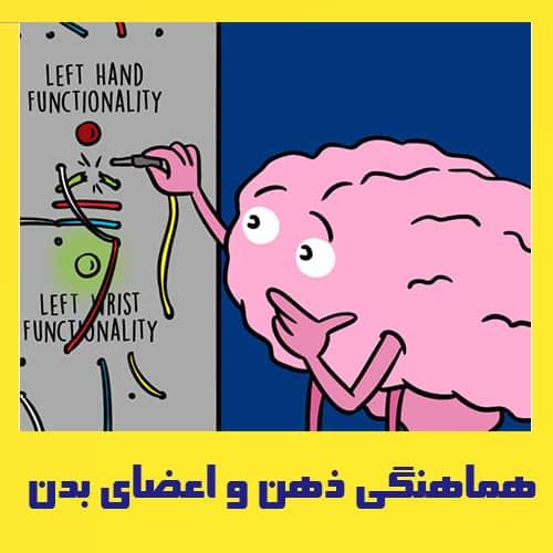 هماهنگی ذهن و اعضاء بدن